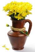 Yellow mums flowers — Stock Photo