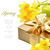 Golden gift box with springtime narcissus — Stock Photo