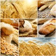 Set of traditional bread, wheat and cereal - Stok fotoraf