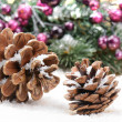 Pine cones in Christmas setting — Photo