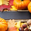 Autumn frame with pumpkins, walnuts and leaves — Stock Photo #12741820