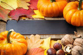 Autumn frame with pumpkins, walnuts and leaves — Stock Photo