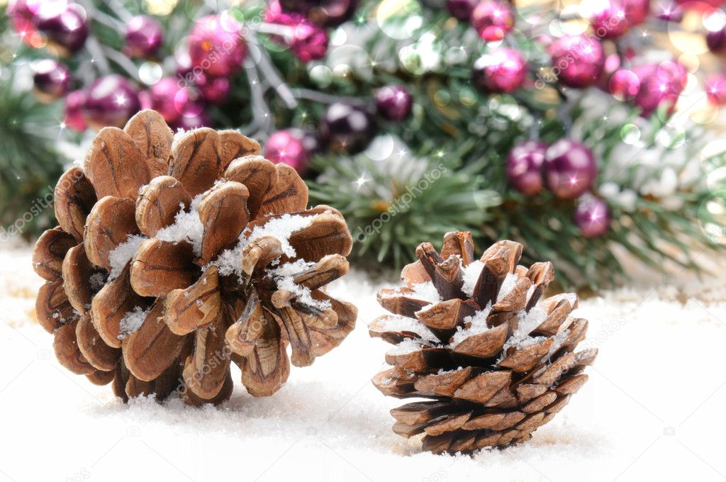 Pine cones in Christmas setting with snow — Stock Photo #12741625