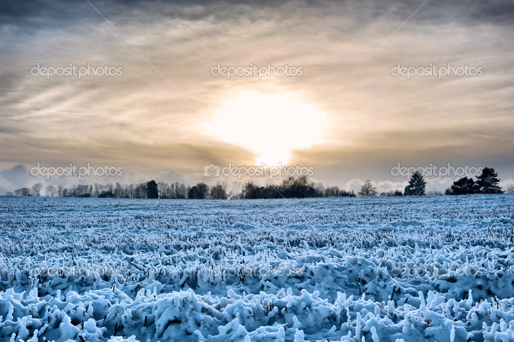 Sunset over a frozen field at winter time  Stock Photo #13053128