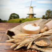 Organische ingrediënten voor brood voorbereiding — Stockfoto