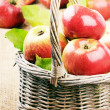 Fresh organic apples with leaves — Stock Photo