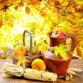 Autumn vegetables on golden forest background — 图库照片