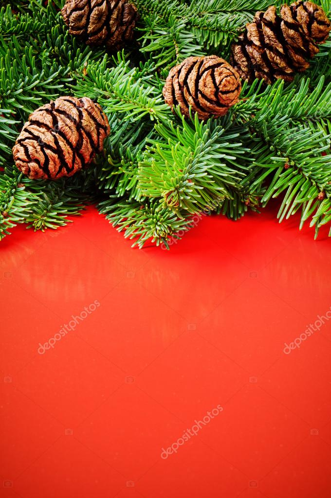 Branches of Christmas tree with pine cones on festive red background with copyspace — Lizenzfreies Foto #15646697