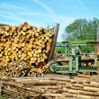 Sawmill (lumber mill) - Stock Photo