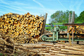 Sawmill (lumber mill) — Stock Photo
