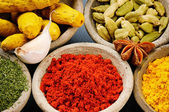 Colorful mix of spices — Stock Photo