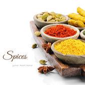 Colorida mezcla de especias — Foto de Stock