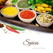 Mistura colorida de especiarias — Foto Stock