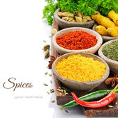 Colorful mix of spices — 图库照片