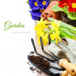 Stock Photo: Garden tools and colorful flowers