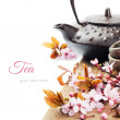 Asian tea pot with cherry blossom — Stock Photo
