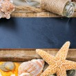 Marine frame with colorful sea shells — Stock Photo