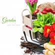 Fresh flowers with garden tools — Stock Photo