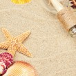 Summer frame with colorful sea shells — Stock Photo