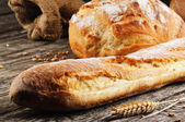 Freshly baked traditional French bread — Stock Photo