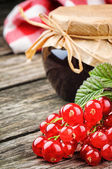 Redcurrant jam and fresh berries — Stock Photo