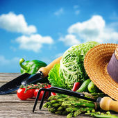Fresh organic vegetables and garden tools — Stock Photo
