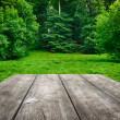 Wooden table with green nature background — Stock Photo #29536947