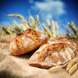 Freshly baked traditional bread with wheat field on background — Stock Photo