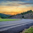 Landscape with curvy road at sunset — Stock Photo #29740721