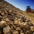 Agricultural vehicle harvesting sugar beet — Stock Photo