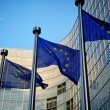 EU flags in front of European Commission — Foto Stock