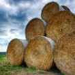 Stock Photo: Stack of straw bales