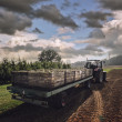 Tractor carrying wooden crates with pears — Stok fotoğraf