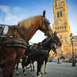 Horse-drawn carriages at Grote Markt  — Stock Photo