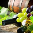 Bottles of red and white wine with fresh grape — Stock Photo