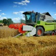 Combine harvester working on cultivated field — Foto Stock