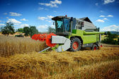 Combine harvester working on cultivated field — Stock Photo