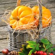 Autumn still-life with fresh pumpkins in basket — Stock Photo
