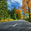Colorful autumn landscape with road — Stock Photo