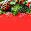 Christmas tree branches with pine cones — Stock Photo
