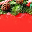 Christmas tree branches with pine cones — Foto de Stock