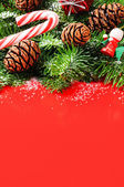 Christmas tree branches with pine cones — Stockfoto