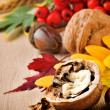 Autumn still-life with walnuts — Stock Photo