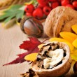Autumn still-life with walnuts — Stockfoto