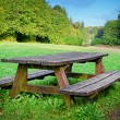 Picnic place in forest — Foto de Stock