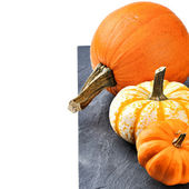 Autumn still-life with pumpkins — Fotografia Stock