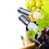 Bottiglie di vino con uve fresche — Foto Stock