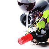 Bottles of red wine with fresh grape — Stok fotoğraf