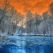 ストック写真: Spectacular orange sunset over winter forest