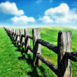 Old wooden fence at green field — Stock Photo